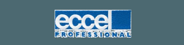 Eccel Professional